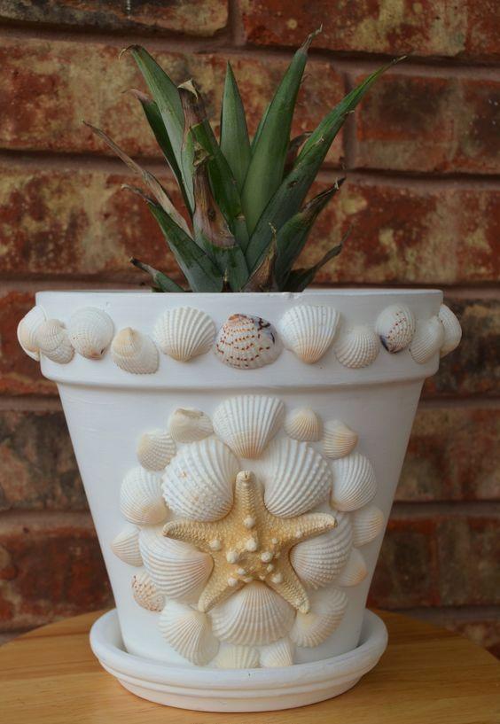 sea shells decor on pots